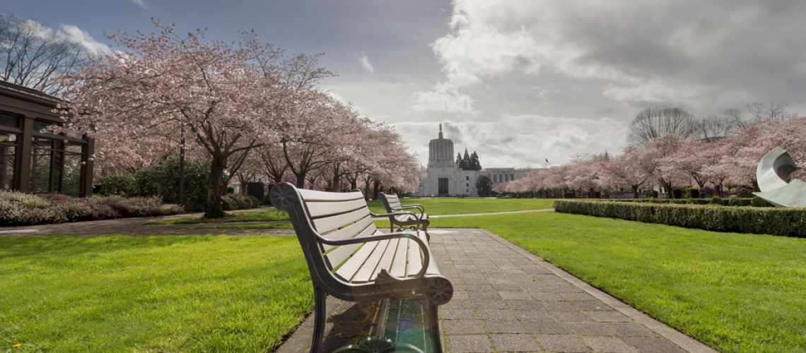 An Introduction to Oregon Estate and Elder Law